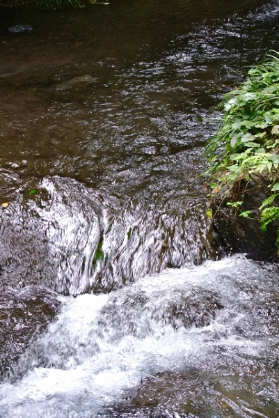 気をつけたい川の危険な場所