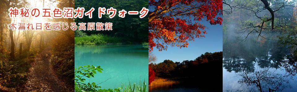 n_goshikinuma01